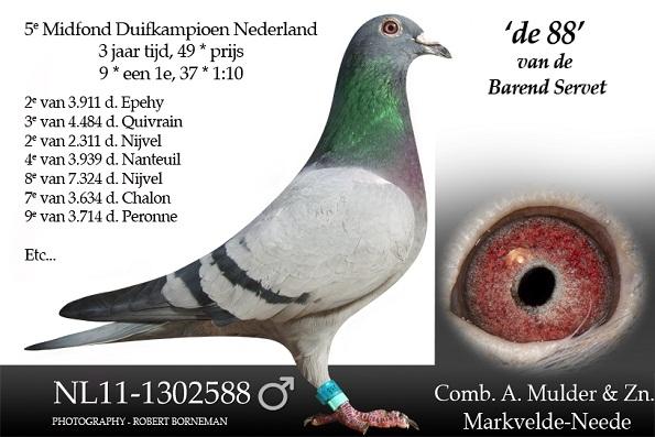 NL11-1302588 de 88 van Barend Servet