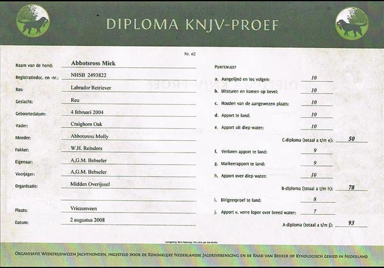 diploma2008